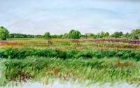 Along the Reest between Den Huizen and Rabbinge.