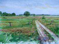 Country road from Den Huizen to the Reest.