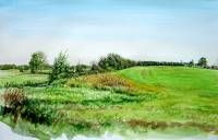 The high field along the Reest near Den Huizen.