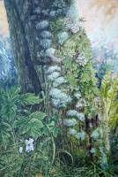 Rare lichens on holm oak. Oil on board 65 x 40 cm. 2012.